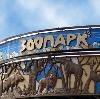 Зоопарки в Кадошкино